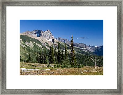 Framed Print featuring the photograph Looking Back by Katie LaSalle-Lowery