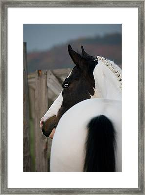 Looking Back Framed Print by Ralf Kaiser