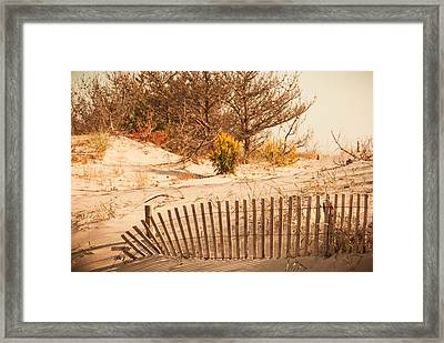 Looking For Coin Beach Framed Print