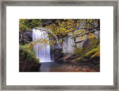 Looking Glass Falls Framed Print by Alan Lenk