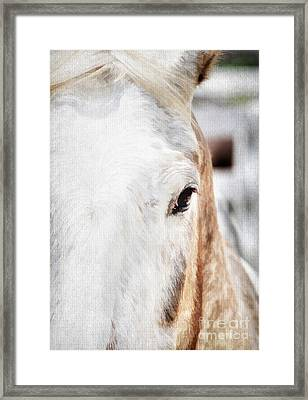 Looking Into Her Soul Framed Print