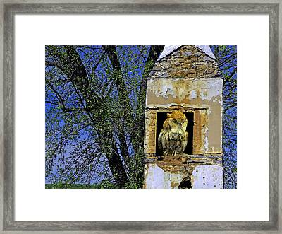 Looking Out From The Hearth Framed Print by Lynda Lehmann