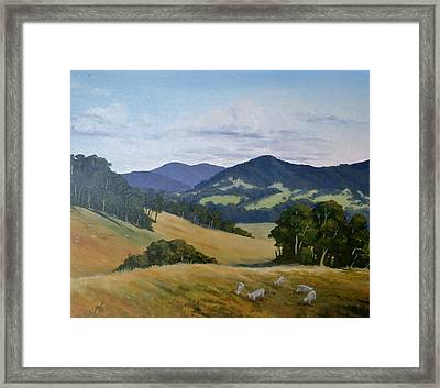 Looking South From Foxground Framed Print