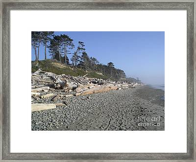 Looking South Framed Print