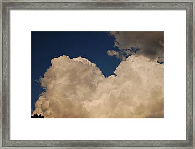 Looking Through Framed Print by Jessica Wilson