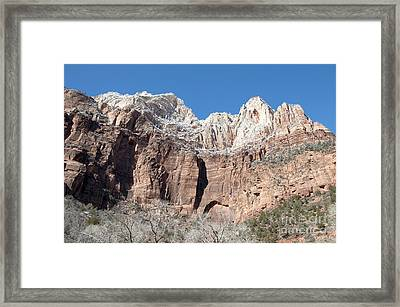 Looking Up Framed Print by Bob and Nancy Kendrick