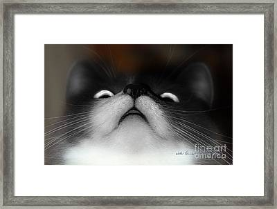 Framed Print featuring the photograph Looking Up by Vicki Ferrari