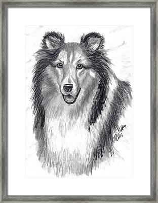 Framed Print featuring the drawing Looks Like Lassie by Julie Brugh Riffey