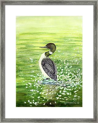 Loon Art Judy Filarecki Watercolor Framed Print by Judy Filarecki