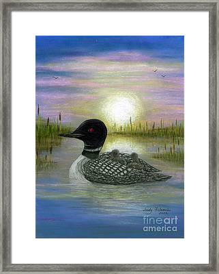 Loon Babies On Mother's Back Judy Filarecki Framed Print by Judy Filarecki