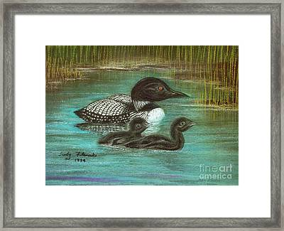 Loon Babies With Mother Judy Filarecki Pastel Painting Framed Print by Judy Filarecki