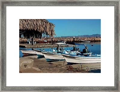 Loreto Marina Siesta Time Framed Print by Scott Massey