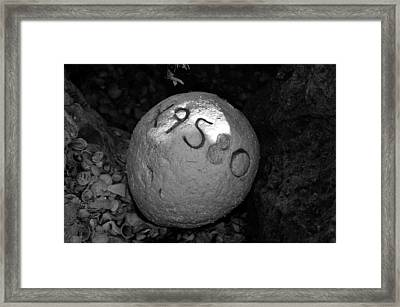 Lost Buoy Framed Print by David Lee Thompson