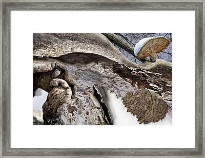 Lost Color Trails Framed Print