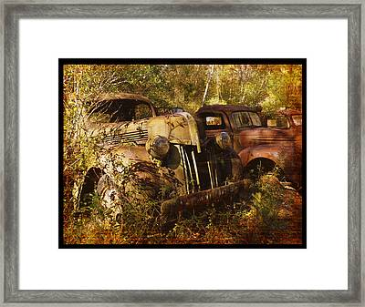 Lost In Time Framed Print by Carla Parris
