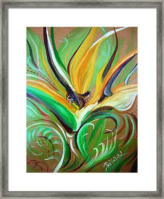 Lost Paradise Framed Print