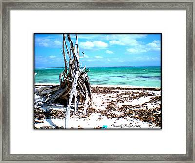 Framed Print featuring the photograph Lost Paradise The Sequel 3 by Danielle  Parent