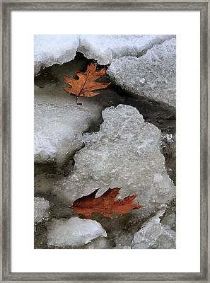 Lost To Each Other Framed Print by Doris Potter