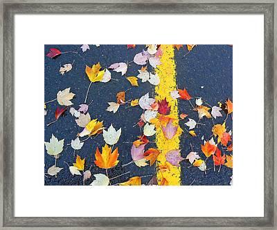 Lot Of Color Framed Print by Pamela Patch