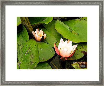 Lotus B Position Framed Print by Charlie Spear