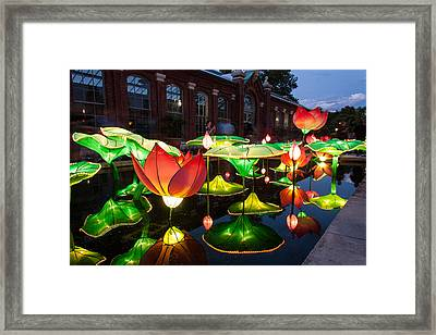Lotus Flower Framed Print by Semmick Photo
