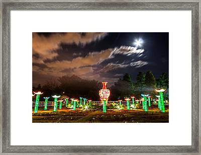 Lotus Ponds Framed Print by Semmick Photo
