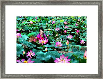 Lotus Season Framed Print