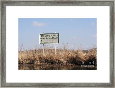 Louis J. Sima Great Lakes Marsh Framed Print