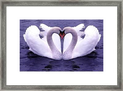 Love Birds Framed Print by ilendra Vyas