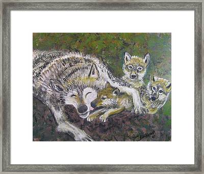 Love Cubs Framed Print by Julia Rita Theriault