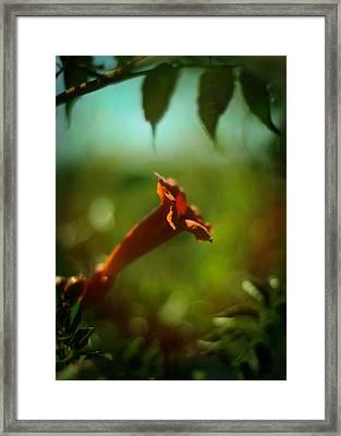 Love Flows Down Framed Print by Rebecca Sherman