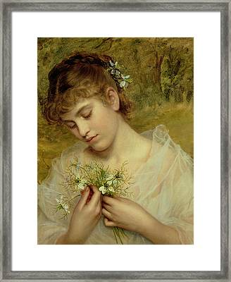 Love In A Mist Framed Print