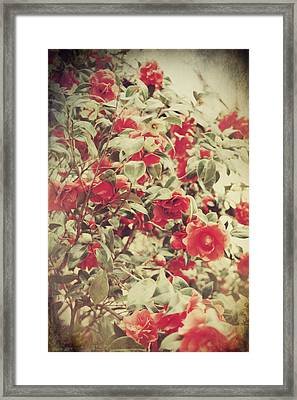 Love Is All Around Framed Print by Laurie Search