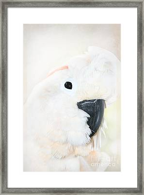 Love Is The Magic Of Changes Framed Print by Sharon Mau