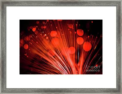 Love Framed Print by Rossi Love