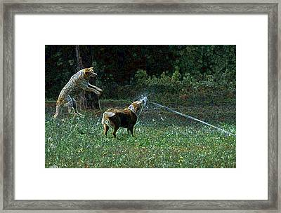 Love To Play Framed Print by One Rude Dawg Orcutt