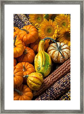 Lovely Autumn Framed Print by Garry Gay