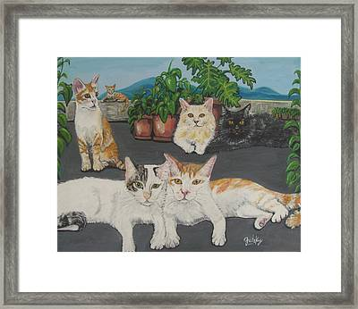 Lovely Cats Framed Print by Paintings by Gretzky
