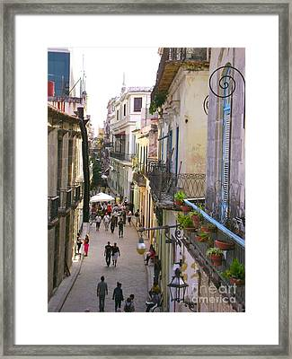 Lovely Havana Framed Print by Laurel Fredericks