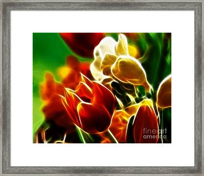 Lovely Tulips Framed Print