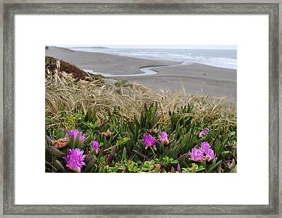 Lovin' The Coast Framed Print