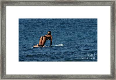 Lovin The Winter Framed Print by Bob Christopher