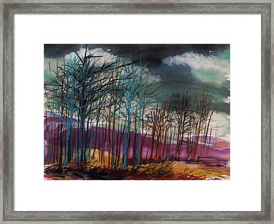 Low Gray Sky Framed Print