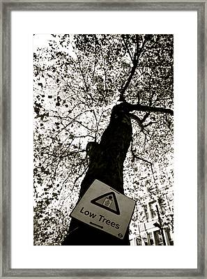 low I think not Framed Print by Jez C Self