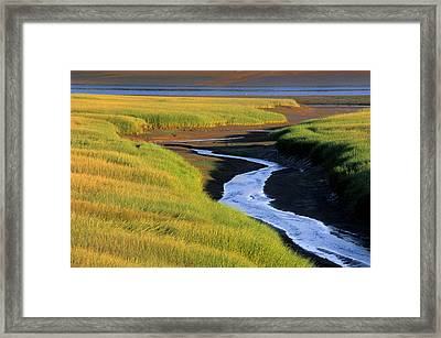 Low Tide At Sunset, Minas Basin, Kings Framed Print by Ron Watts