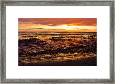 Framed Print featuring the photograph Low Tide by Michael Friedman