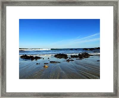 Low Tide On Long Beach Framed Print by Pamela Turner