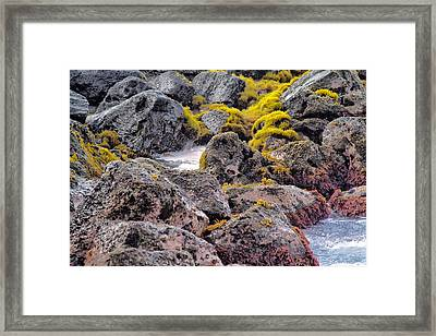 Low Tide Framed Print by Roger Mullenhour