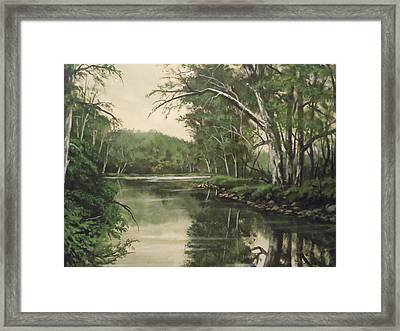 Loyahanna Creek Framed Print by James Guentner