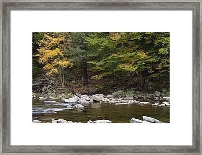 Loyalsock Creek Flowing Gently Framed Print